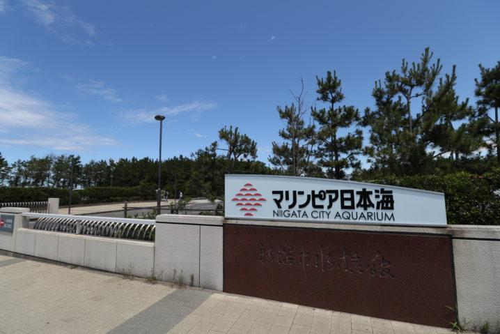 海 マリンピア 日本